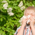 Help! My Son's Stuffy Nose Doesn't Care if It's a Cold or Allergies