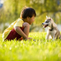 7 Reasons a Pet is Good For Your Special Needs Kid