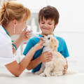 How Can Regular Vet Visits Help Keep Your Kids Safe Too? Part2
