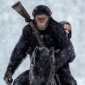 War for the Planet of the Apes is Sensory Friendly, Tuesday at AMC
