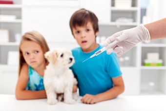 worried kids with puppy at vet