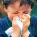 Seasonal Flu and Swine Flu Fundamentals