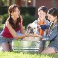 """Engage Your Family in Keeping Your Home """"Pet-Clean"""" and Healthy"""