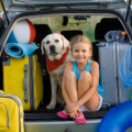Make Your Family Vacation Safe, Secure and Fun