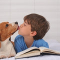 Could Your Pet Make Your Family Sick?
