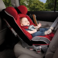 """""""Forgotten Backseat Baby"""" Syndrome: an Unimaginable Danger"""