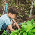 Empowering Children Through Chores