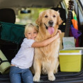 How to Include The Family Dog In Summer Trips & Activities