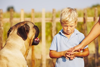 Helping a Child Who's Afraid of Dogs Through Their Fear